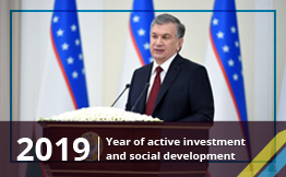 2019 - Year of active investment and social development